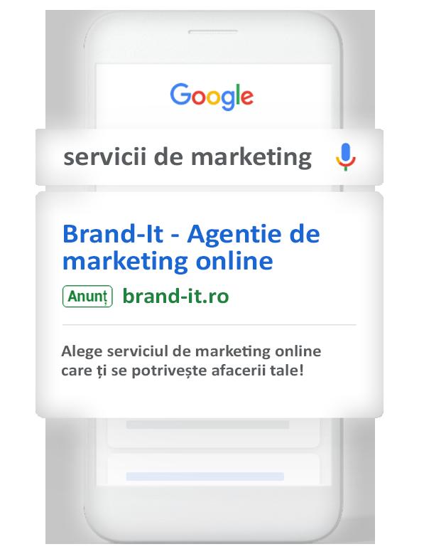Poza pentru sectiunea Administrare Google Ads
